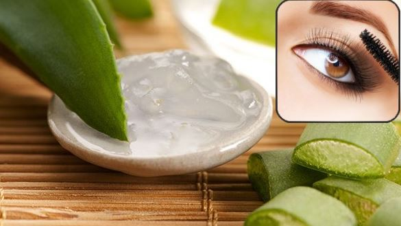 Make aloe vera gel for your eyebrows