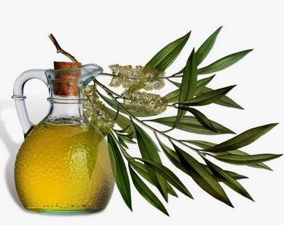 Tea tree oil remedy for ingrown hair